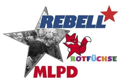 Erfahrungen beim Aufbau rebellischer Widerstandsgruppen