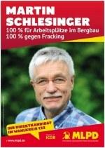 Martin Schlesinger