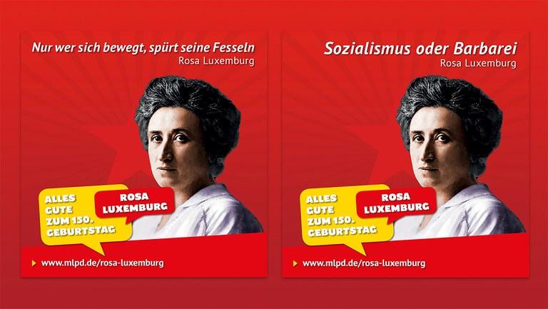"""""""Ein Adler war sie doch..."""" - Rosa Luxemburg - Umstritten wie streitbar – eine kritische biografische Skizze"""